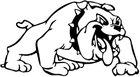 Frostproof Bulldogs Boys Varsity Baseball Spring 17-18 team photo.