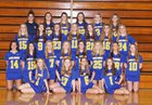 Lake Forest Scouts Girls Varsity Lacrosse Spring 17-18 team photo.