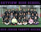 Skyview Wolverines Girls JV Soccer Spring 17-18 team photo.
