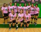 Newcomb Skyhawks Girls JV Volleyball Fall 18-19 team photo.