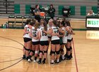 Westwood Wolverines Girls JV Volleyball Fall 18-19 team photo.