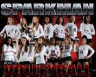 Sparkman Senators Girls JV Volleyball Fall 18-19 team photo.