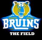 Beddingfield Bruins Boys Varsity Football Fall 18-19 team photo.