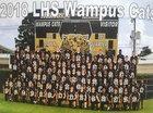 Leesville Wampus Cats Boys Varsity Football Fall 18-19 team photo.