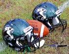Livingston Lions Boys Varsity Football Fall 18-19 team photo.