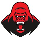 Solomon Gorillas Boys Varsity Football Fall 18-19 team photo.
