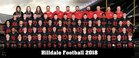 Hilldale Hornets Boys Varsity Football Fall 18-19 team photo.