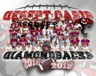 Desert Oasis Diamondbacks Boys Varsity Football Fall 18-19 team photo.
