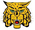 St. James Wildcats Boys Varsity Football Fall 18-19 team photo.