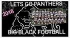 Tug Valley Panthers Boys Varsity Football Fall 18-19 team photo.