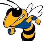 Big Lake Hornets Boys Varsity Football Fall 18-19 team photo.
