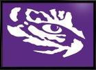 Watertown Purple Tigers Boys Varsity Football Fall 16-17 team photo.