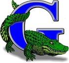 Grulla Gators Boys Varsity Football Fall 16-17 team photo.