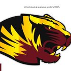 Middleton Tigers Boys Varsity Football Fall 16-17 team photo.