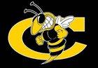 Cook Hornets Boys Varsity Football Fall 16-17 team photo.