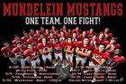 Mundelein Mustangs Boys Varsity Football Fall 16-17 team photo.