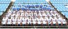 Meridian Wildcats Boys Varsity Football Fall 16-17 team photo.