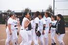 Mountain House Mustangs Girls Varsity Softball Spring 18-19 team photo.