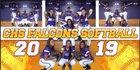 Columbus Falcons Girls Varsity Softball Spring 18-19 team photo.