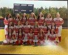 South Stanly Rowdy Rebel Bulls Girls Varsity Softball Spring 18-19 team photo.