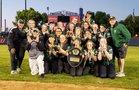 Lane Tech Indians Girls Varsity Softball Spring 18-19 team photo.