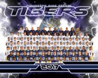 Arlington Tigers Boys Varsity Football Fall 17-18 team photo.