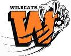 Wink Wildcats Boys Varsity Football Fall 17-18 team photo.