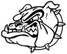 Anderson County Bulldogs Boys Varsity Football Fall 17-18 team photo.
