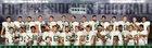 Roosevelt Presidents Boys Varsity Football Fall 17-18 team photo.