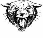 Paso Robles Bearcats Boys JV Football Fall 18-19 team photo.