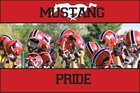 Pershing County Mustangs Boys JV Football Fall 18-19 team photo.