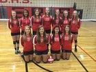 Blountstown Tigers Girls JV Volleyball Fall 14-15 team photo.