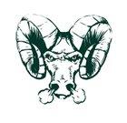 Pine-Richland Rams Boys Varsity Football Fall 15-16 team photo.