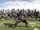 Trinity Trojans Boys Varsity Football Fall 15-16 team photo.