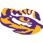 Marksville Tigers Boys Varsity Football Fall 15-16 team photo.
