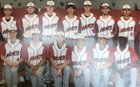 Blevins Hornets Boys Varsity Baseball Spring 18-19 team photo.