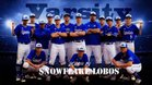 Snowflake Lobos Boys Varsity Baseball Spring 18-19 team photo.