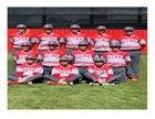 South Stanly Rowdy Rebel Bulls Boys Varsity Baseball Spring 18-19 team photo.