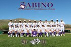 Sabino Sabercats Boys Varsity Baseball Spring 18-19 team photo.