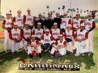 Glendale Cardinals Boys Varsity Baseball Spring 18-19 team photo.