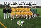 Lynden Lions Boys Varsity Baseball Spring 18-19 team photo.