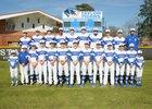Taylor Tigers Boys Varsity Baseball Spring 18-19 team photo.