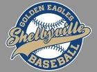 Shelbyville Central Golden Eagles Boys Varsity Baseball Spring 18-19 team photo.