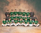 GlenOak Golden Eagles Boys Varsity Baseball Spring 18-19 team photo.