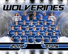 Lincoln Wolverine Boys Varsity Baseball Spring 18-19 team photo.