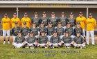 Portage Central Mustangs Boys Varsity Baseball Spring 18-19 team photo.