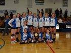 Cedaredge Bruins Girls Varsity Volleyball Fall 15-16 team photo.