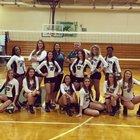 Lake Placid Dragons Girls Varsity Volleyball Fall 15-16 team photo.