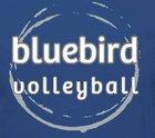 Highlands Bluebirds Girls Varsity Volleyball Fall 15-16 team photo.