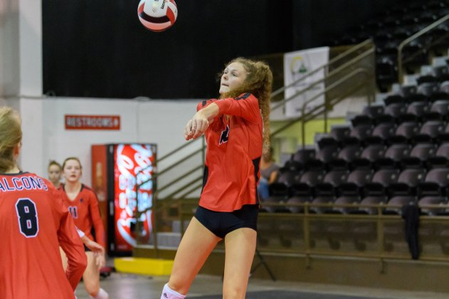 Top 25 volleyball rankings